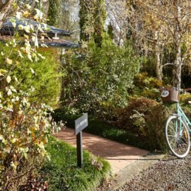 Pizzini's Vineyard Guesthouse